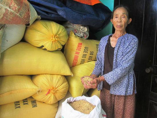 Đông xuân năm ngoái, hàng trăm hộ dân ở Duy Xuyên điêu đứng vì doanh nghiệp không thu mua hết giống lúa. Ảnh: H.N