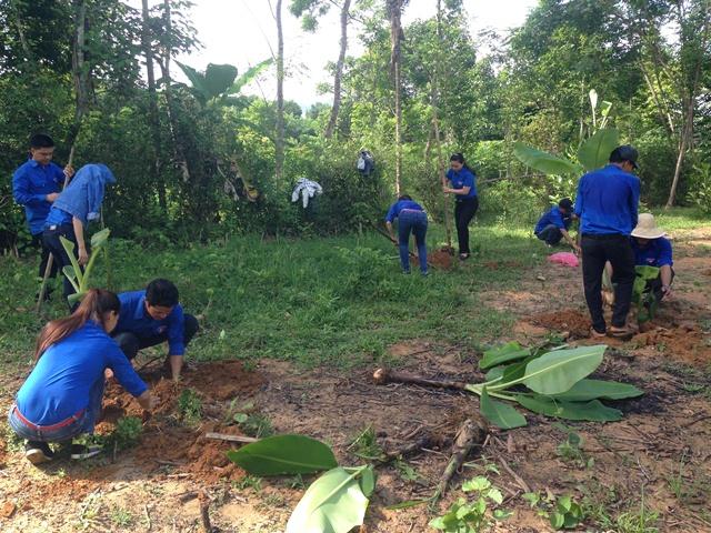 ĐV-TN trồng cây ăn quả tặng hộ thanh niên nghèo. Ảnh: MỸ LINH