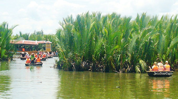Water coconut forest – an attractive destination of Quang Nam