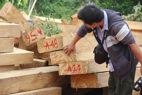 280 phách gỗ pơmu bị tạm giữ tại Trạm kiểm lâm địa bàn Chà Vàl.