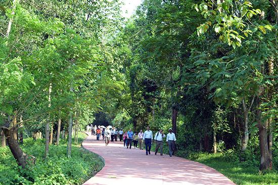 Tourists to My Son Sanctuary. Photo: VINH LOC