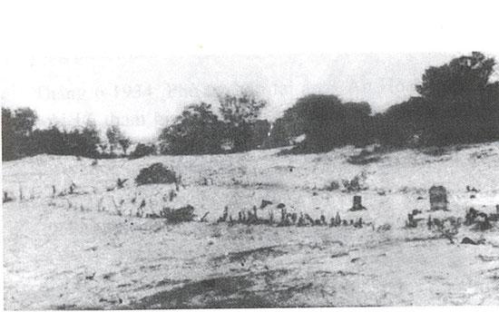 Rừng Định Phước, xã Tam Nghĩa, nơi thành lập Phủ ủy Tam Kỳ ngày 15.8.1933. Ảnh: tinhuyquangnam.vn