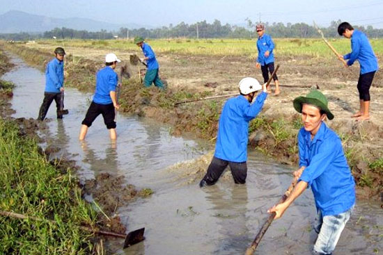 Thanh niên Núi Thành tham gia nông thôn mới, xây dựng quê hương.