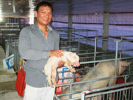 Với mô hình chăn nuôi heo khép kín, mỗi năm anh Võ Ngọc Sơn thu lãi 6 tỷ đồng.Ảnh: HOÀI NHI