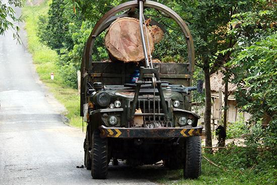 """Xe """"hết đát"""" được thuê chở gỗ tại huyện Nam Giang vào trung tuần tháng 8.2016.Ảnh: THÀNH CÔNG"""