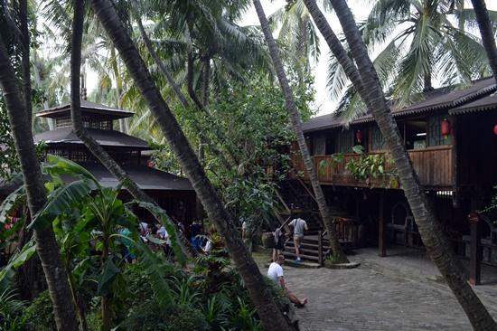 Các ngôi nhà trong làng thường làm dưới những thân dừa rất đặc trưng