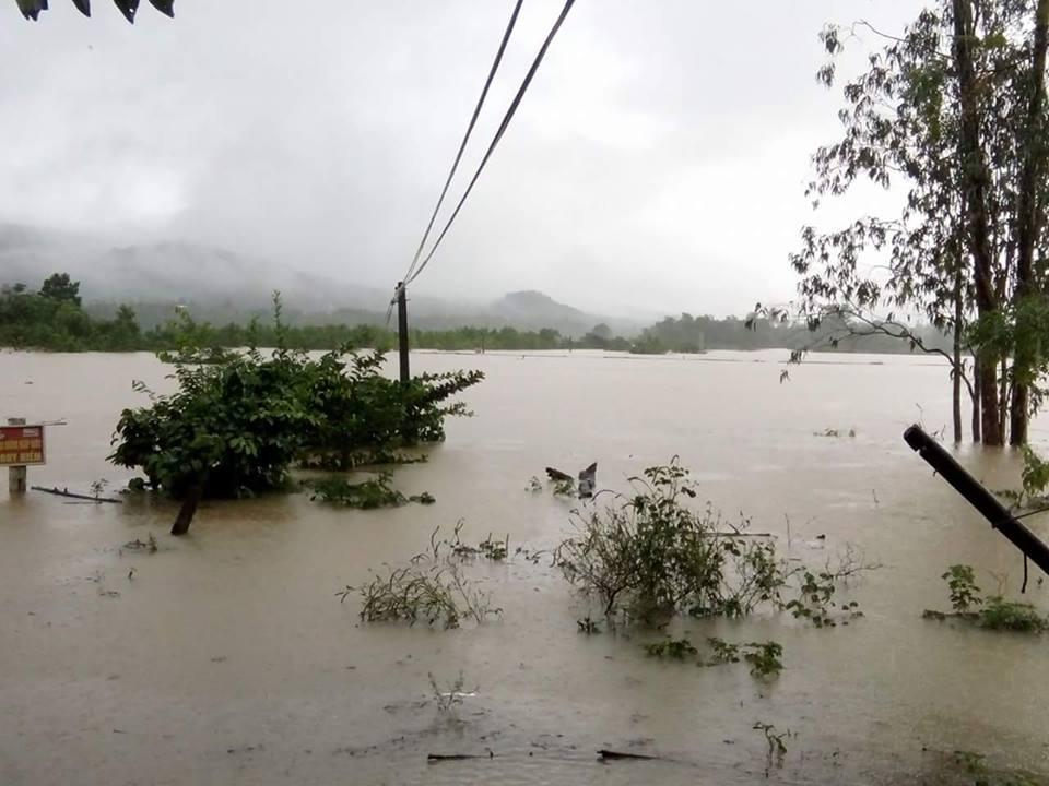 Hiện tại, nước lũ ở sông Thu Bồn đoạn qua huyện Nông Sơn đang lên rất nhanh. Ảnh: VINH THÔNG