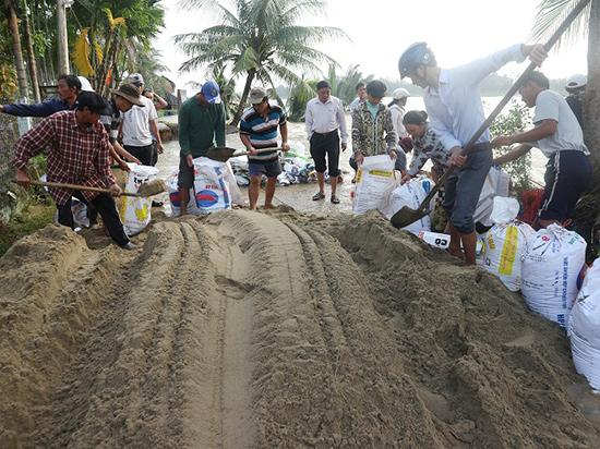 Lực lượng thanh niên và người dân địa phương dùngbao tải xúc cát kè tạm, chống sạt lở vào khu dân cư. Ảnh: TUYẾT MAI - PHI THÀNH