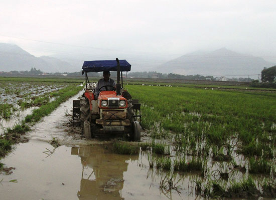 Duy Xuyên đang đẩy nhanh tiến độ cày dầm đất để chuẩn bị triển khai gieo sạ lúa. Ảnh: H.N
