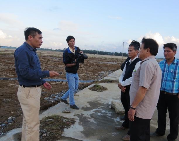 Phó Cục trưởng Cục Trồng trọt Nguyễn Như Cường khảo sát tại cánh đồng xã Đại Cường. Ảnh: Bích Liên