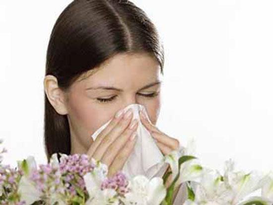 Phấn hoa là tác nhân gây viêm mũi dị ứng.