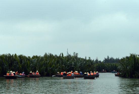 Thời gian gần đây lượng khách du lịch đến rừng dừa nước Cẩm Thanh tăng cao. Ảnh: V.LỘC