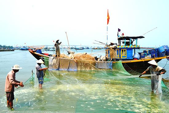 Ngư dân xã Duy Hải gỡ cá ngay trên thuyền để bán tại bến An Lương. Ảnh: N.Q.V