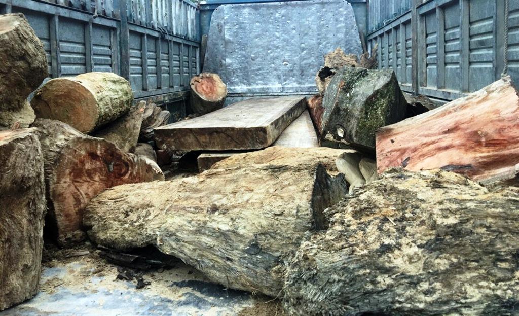 Số gỗ tang vật phát hiện trên xe tải. Ảnh: CSGT cung cấp