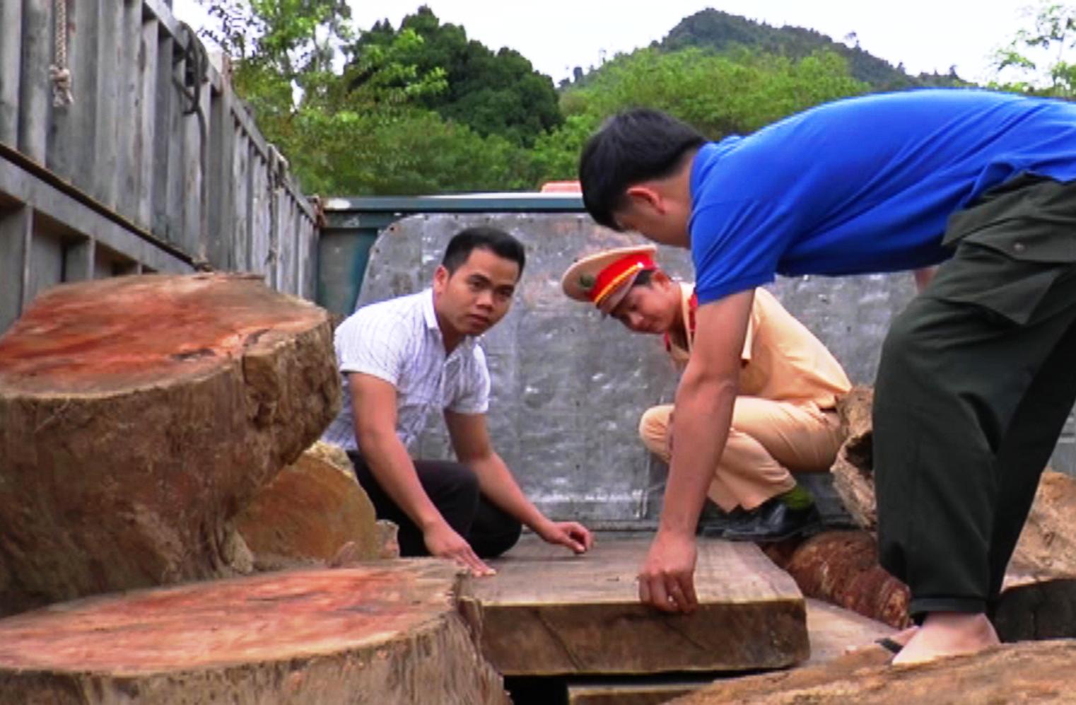 Số gỗ tang vật vi phạm được tổ tuần tra Đội CSGT số 2 thu giữ. Ảnh: V.K