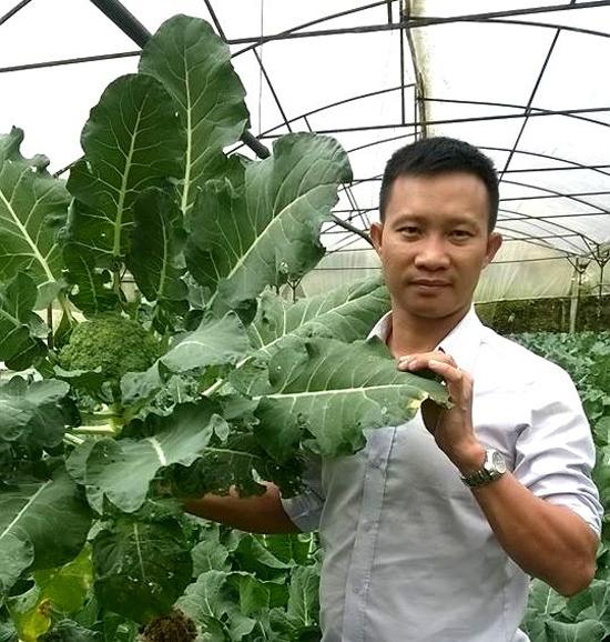  Nhiều trang trại sản xuất rau sạch ở Đà Lạt đã chủ động liên kết với anh Châu. Ảnh: P.V