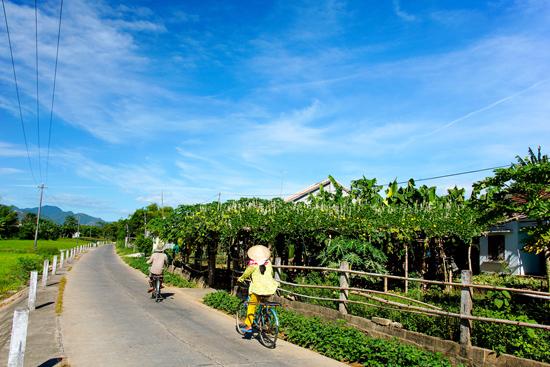 Phong cảnh làng quê Quảng Nam. Ảnh: PHƯƠNG THẢO