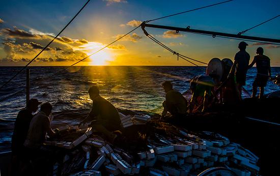 Tàu cá QNa 90135 TS (xã Tam Quang) đang thả trôi đánh lưới ở vùng biển Hoàng Sa.