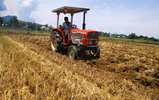 Những ngày qua, nông dân toàn tỉnh tập trung cày phơi ải đất nhằm cắt đứt cầu nối sâu bệnh.  Ảnh: HOÀI NHI