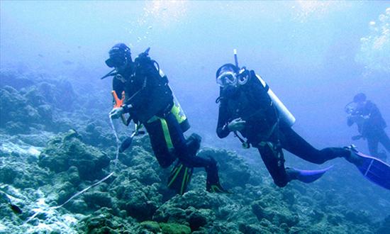 Lặn ngắm san hô - một thú vui tuyệt diệu.