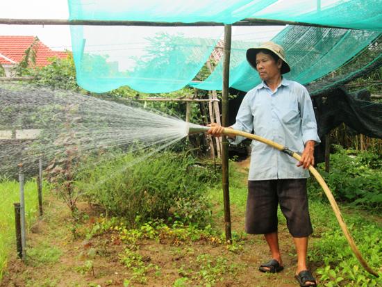 Mô hình sản xuất nông nghiệp hữu cơ kết hợp du lịch sinh thái ở thôn Thanh Đông (Cẩm Thanh, Hội An) mang lại hiệu quả cao. Ảnh: VĂN SỰ