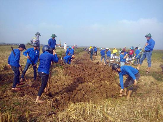 Thanh niên tình nguyện giúp dân đắp bờ bao ngăn ruộng. Ảnh: M.L