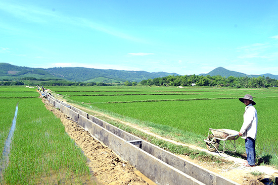 Nông dân xây thủy lợi nội đồng để tiết kiệm nước. Ảnh: Q.VIỆT