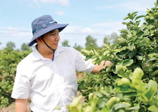 Nông dân Nguyễn Văn Hiển.Ảnh: H.V.M