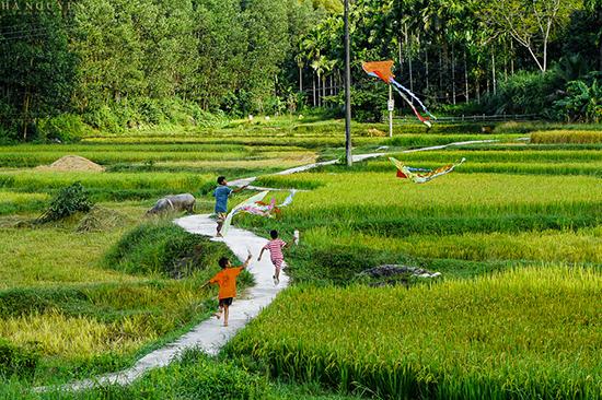 Trẻ em thả diều ở vùng trung du Tiên Phước.