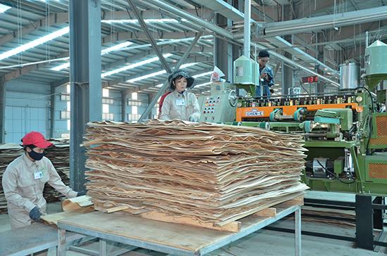 Dây chuyền công nghệ sản xuất của nhà máy chế biến gỗ MDF Quảng Nam rất hiện đại.