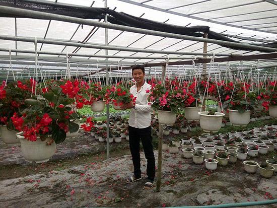 Anh Tiền đã mạnh dạn đầu tư và trồng thử nghiệm nhiều loại hoa mới.