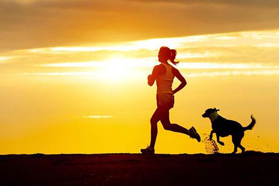 Tập thể dục thường xuyên có thể cải thiện đáng kể chất lượng giấc ngủ của chúng ta .