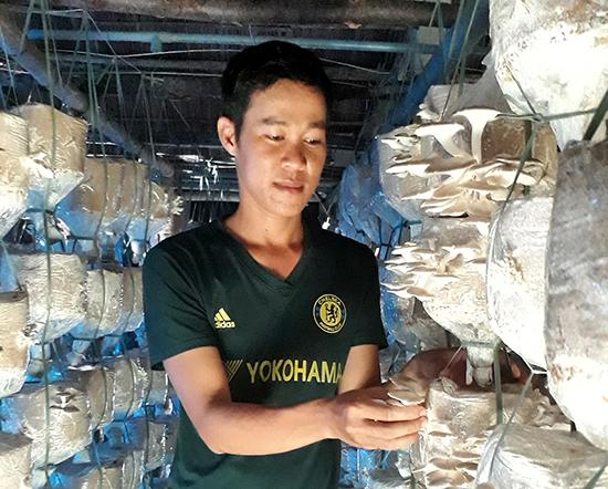 Anh Trung đang chăm sóc vườn nấm. Ảnh: GIANG BIÊN