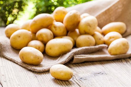 Trong Đông y, củ khoai tây vị ngọt, tính bình, có tác dụng bổ khí, kiện tỳ, tiêu viêm.