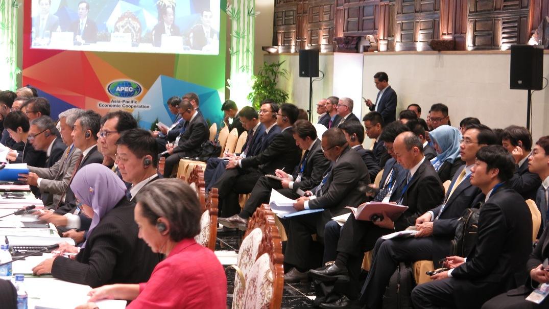 Đại biểu các nền kinh tế thành viên APEC tham dự hội nghị. Ảnh: T.D