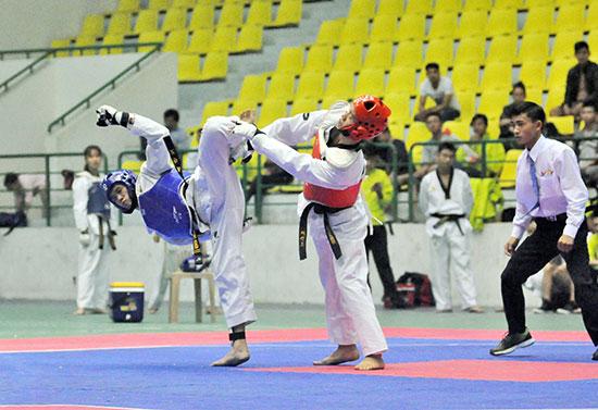 Karatedo sẽ là môn thi đấu cuối cùng, kết thúc Đại hội TD-TT tỉnh Quảng Nam lần thứ VIII. Ảnh: T.VY