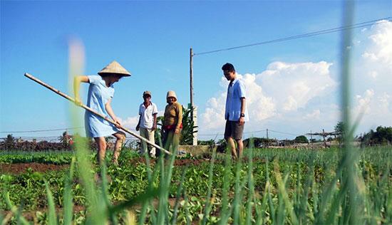 """Du khách tham gia tour """"Một ngày làm nông dân làng rau Trà Quế""""."""