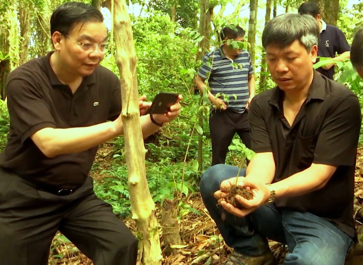 Minister of Science and Technology Chu Ngoc Anh visited a Ngoc Linh ginseng garden in Nam Tra My district (Quang Nam) in 2017