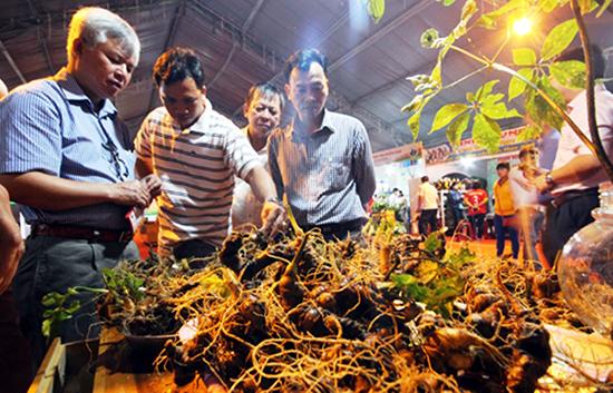 Sâm củ được bán tại phiên chợ sâm ở Nam Trà My.