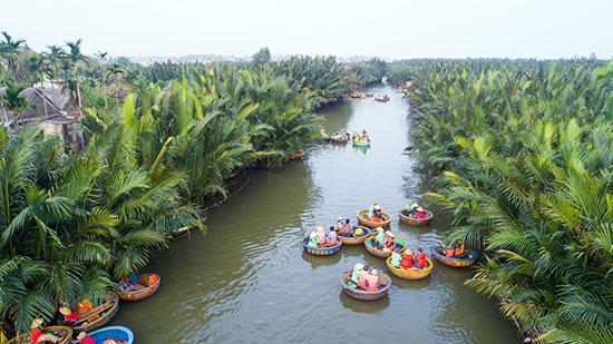 Du khách tham quan rừng dừa.