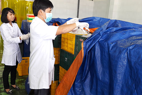 Với nguồn nhân lực bị hạn chế, việc thực hiện các chức năng được giao của phòng y tế huyện rất khó khăn.  Trong ảnh: Đoàn kiểm tra liên ngành có đại diện của phòng y tế kiểm tra vệ sinh an toàn thực phẩm tại các cơ sở sản xuất thực phẩm.