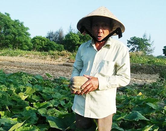 Mạnh dạn thuê đất làm nông đã mang lại hiệu quả kinh tế cho gia đình ông Sương. Ảnh: H.H