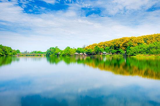 """Tác phẩm """"Mây, nước và hoa"""" của Lộc Phạm."""