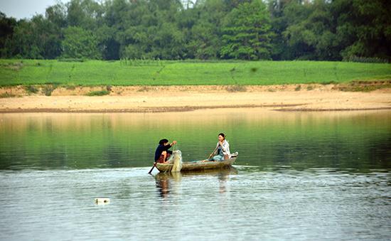 Người dân chèo thuyền đánh cá mòi trên sông Thu Bồn. Ảnh: XUÂN THỌ