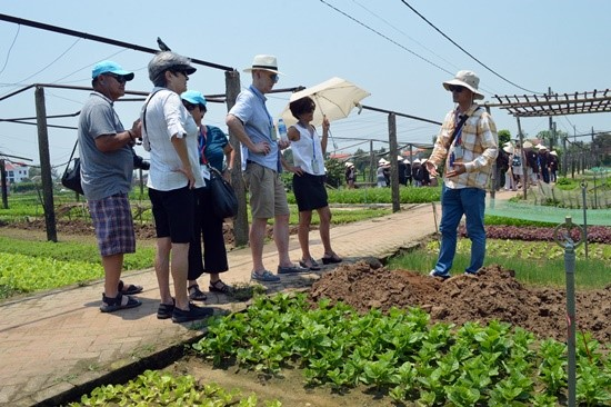 Foreign tourists in Tra Que vegetable village