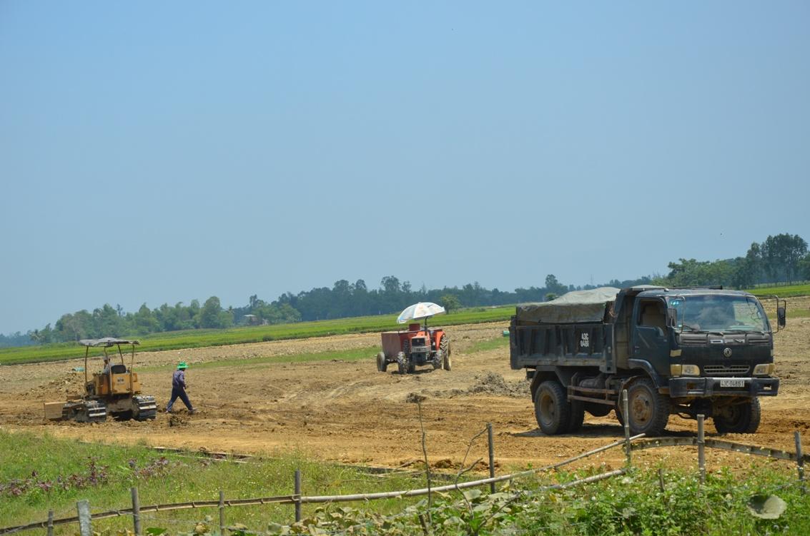 Dự án cải tạo đồng ruộng tại xã Điện Thắng Nam (thị xã Điện Bàn)