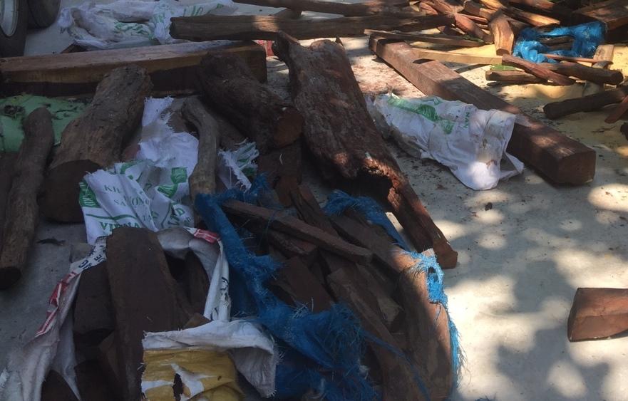 Một phần số gỗ trắc giấu trên xe tải được phát hiện. Ảnh: Đ.C