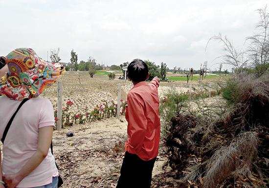 Nhóm hộ dân thôn 6, xã Bình Dương (Thăng Bình) chỉ khu vực rừng dương trước đây - bây giờ là Khu nghỉ dưỡng Vinpearl.