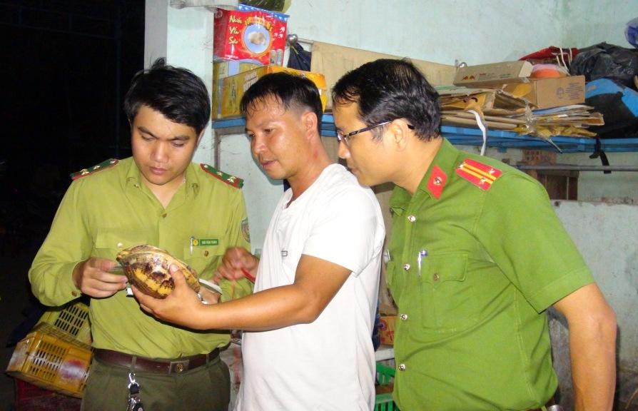 Lực lượng chức năng kiểm tra chủng loại cá thể rùa. Ảnh: X.M
