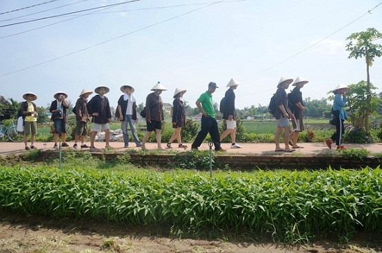 Foreigners are interested in visiting Tra Que vegetable village.